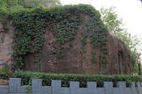 被植被盖住的石壁上的刻字
