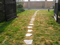 草地上的简洁小路