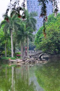 公园湖泊绿树风景图片
