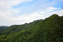绿色山岭风景摄影