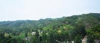绿色山岭下的村落