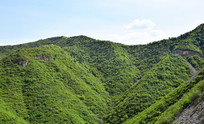 绿色山岭风景图