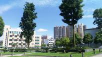 蓝天下的平坝城区