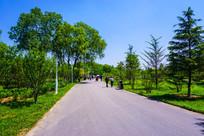 唐山世园会的道路