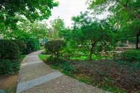 公园的鹅卵石小路