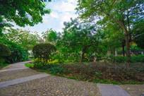 南门公园的小路