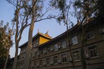 校园古树古建筑