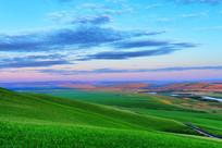 绿色牧场风景