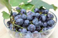 紫色的葡萄