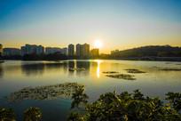 夕阳下南湖的日光