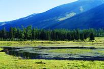 新疆喀纳斯湖水风光