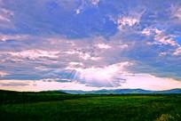 绿色原野风光