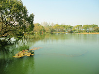 西湖美景风景