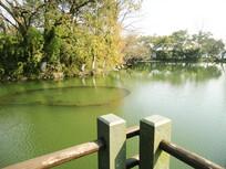 西湖名胜风景