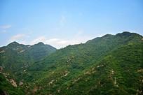 山岭上的绿色植被