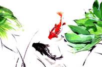 手绘鲤鱼和绿色荷叶