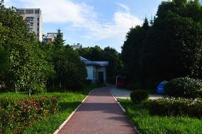 贵阳绿色出行的自行车道