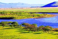 绿色牧场河湾风景
