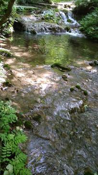 嬉闹的小河流风景