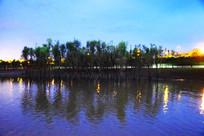 湘江绿树蓝天夜景灯光图