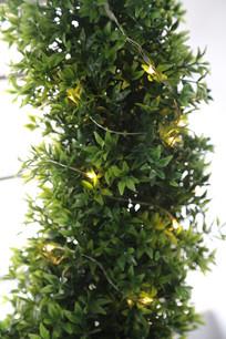 缠在树上的暖色灯串