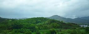 绿色的山岭风景图片