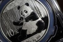 10元熊猫币特写