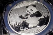 熊猫币近摄特写