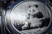 熊猫币微距特写