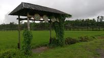 农家乐田园体验园