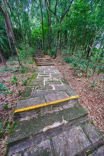 惠州飞鹅岭的台阶