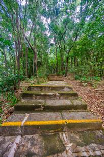 惠州飞鹅岭公园的台阶