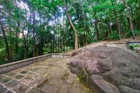 惠州飞鹅岭公园里的山石