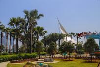 热带树种公园