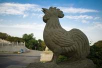 十二生肖之一鸡