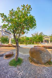 惠州丰湖书院的树木和石头
