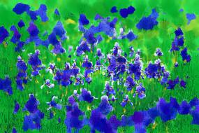 电脑画《草原蓝色的花》