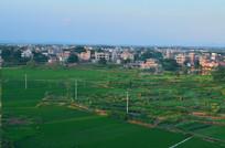 乡村田园风格图片