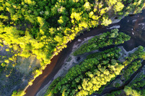 航拍森林河流