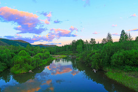 绿色的树林 清澈的河流
