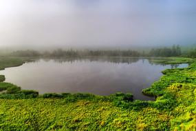 森林湖泊晨雾风景 (航拍)