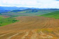 山区收割后的农田