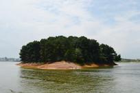 红枫湖小岛上茂密的树林