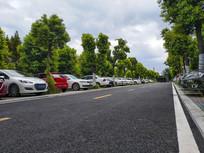 树林停车场
