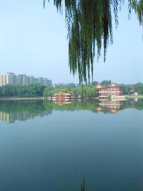美丽的湖边景色