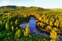 蓝色的森林河