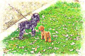 狗狗装饰画