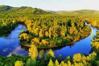 弯曲的森林河