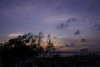 傍晚西湾红树林