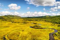 山林草甸弯曲的河流 航拍